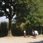 15.Mapello