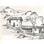 Lantana-Dorga