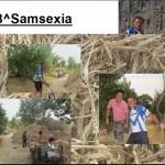 1.Samsexia