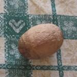 342. L'uovo rammendo di mia madre