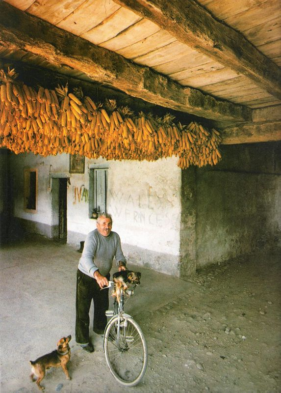 066. Pognano