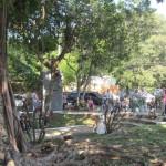 IMG_4019..la gente di trova nel parco per leggere il Vangelo