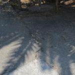 IMG_6618..solo ogni tanto un ppoco di ombra...ma poi