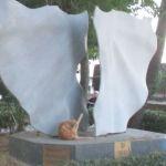 IMG_7303..faccio fcare un ola ad un gatto