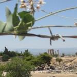 IMG_4575. Corinto