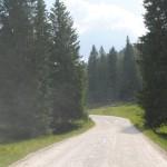DSC_1144. Gallio frazione di Asiago x raggiungere l'ortigara si sale per 10 km in strada sterrata