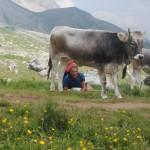 86-ferrata-bepi-zac-e-lora-della-merenda-un-poco-di-buon-latte