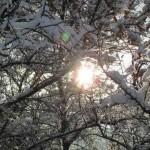 4938859_1519_22_dicembre_solstizio_inverno_2019